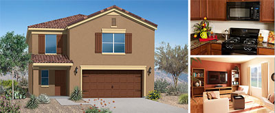 San Tan Valley New Home Community: San Tan Heights
