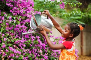 Girl Watering Purple Flowers