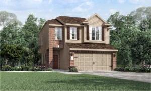Panther Oaks New Home - Houston