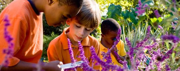 Kids Exploring Atlanta Botanical Garden